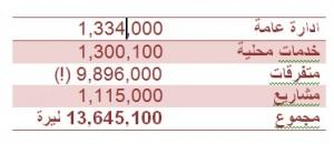תקציב ערערה - 88